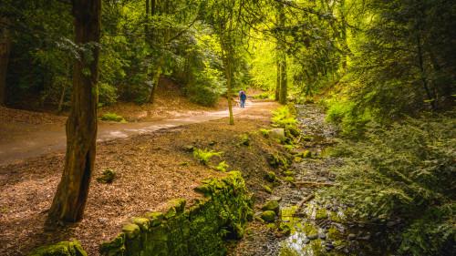 Walks and Recreation