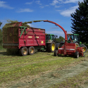 Balgownie Farm Tour
